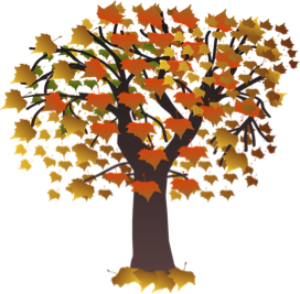 tree with fall leaves